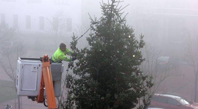 Weihnachtsbäume am Gubener Rathaus und Dreieck stehen